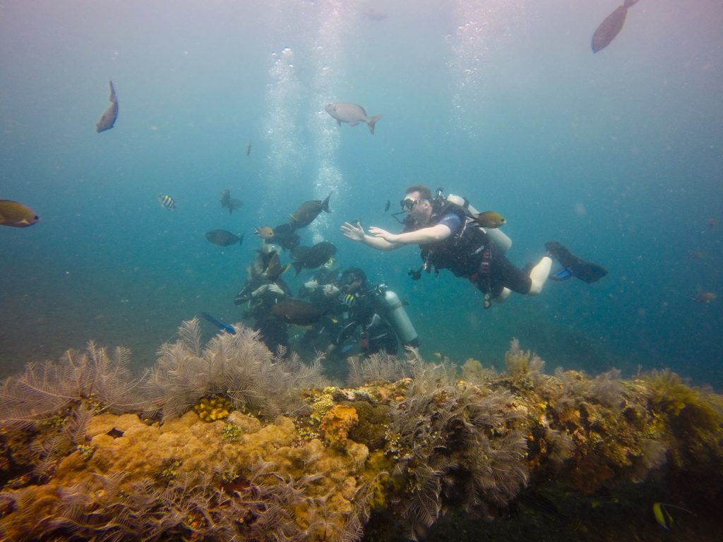 Scuba Diving Bali For a Memorable Experience